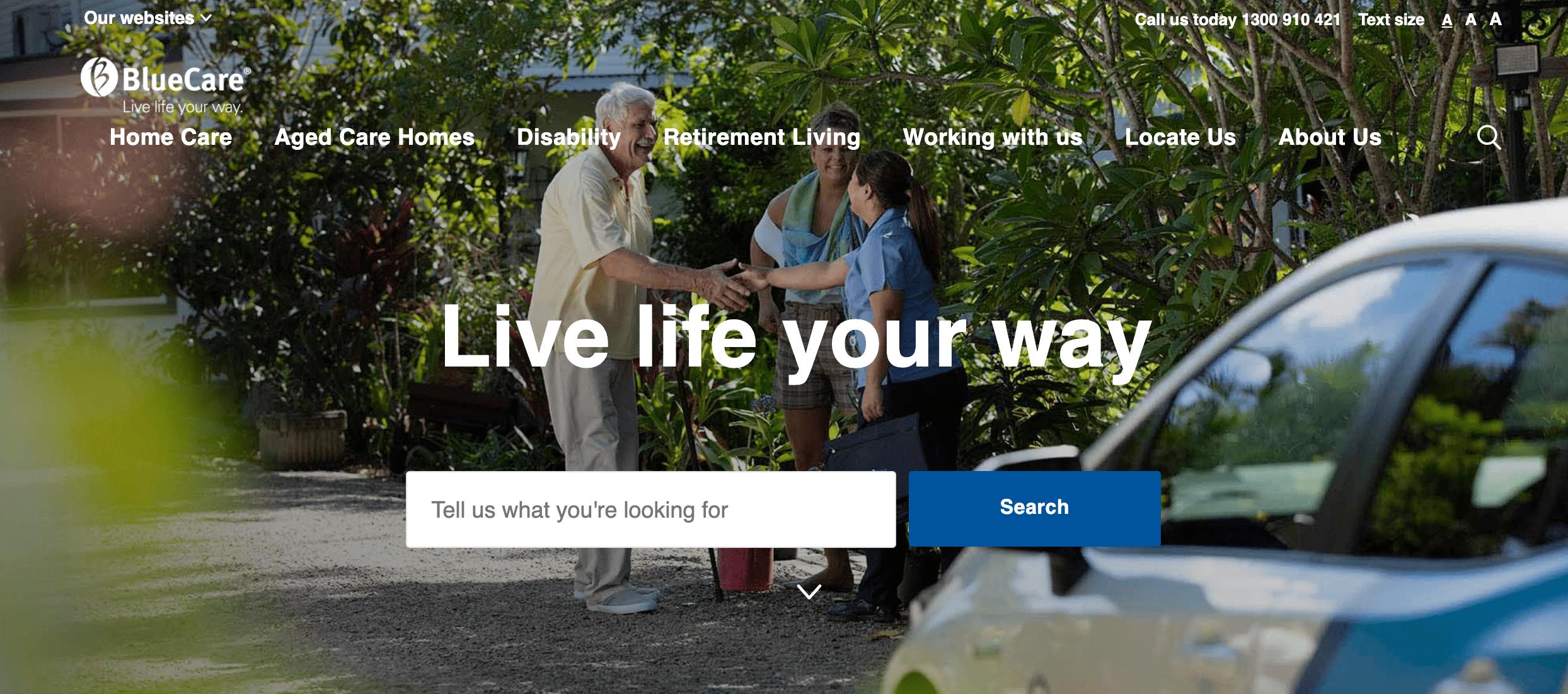 desktop view of bluecare website