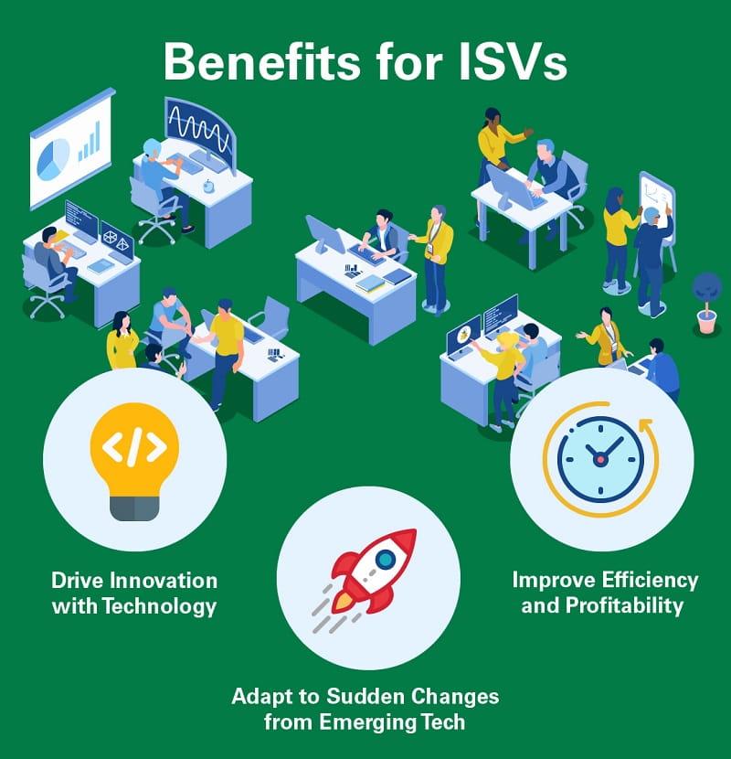Tokenization benefits for ISVs